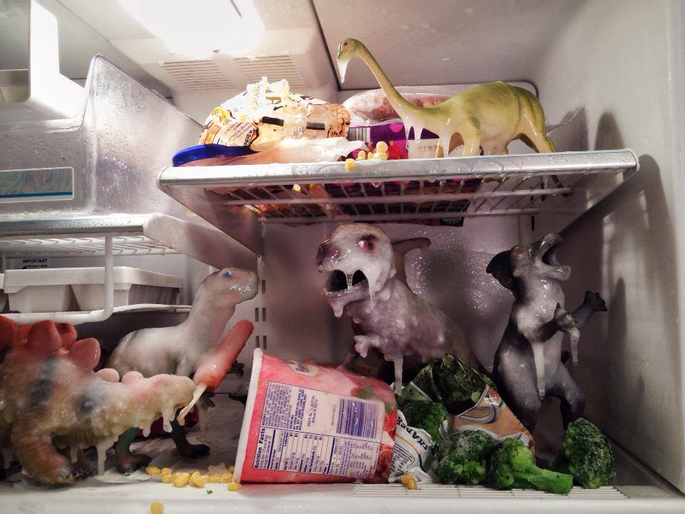 Toy dinosaurs iced over