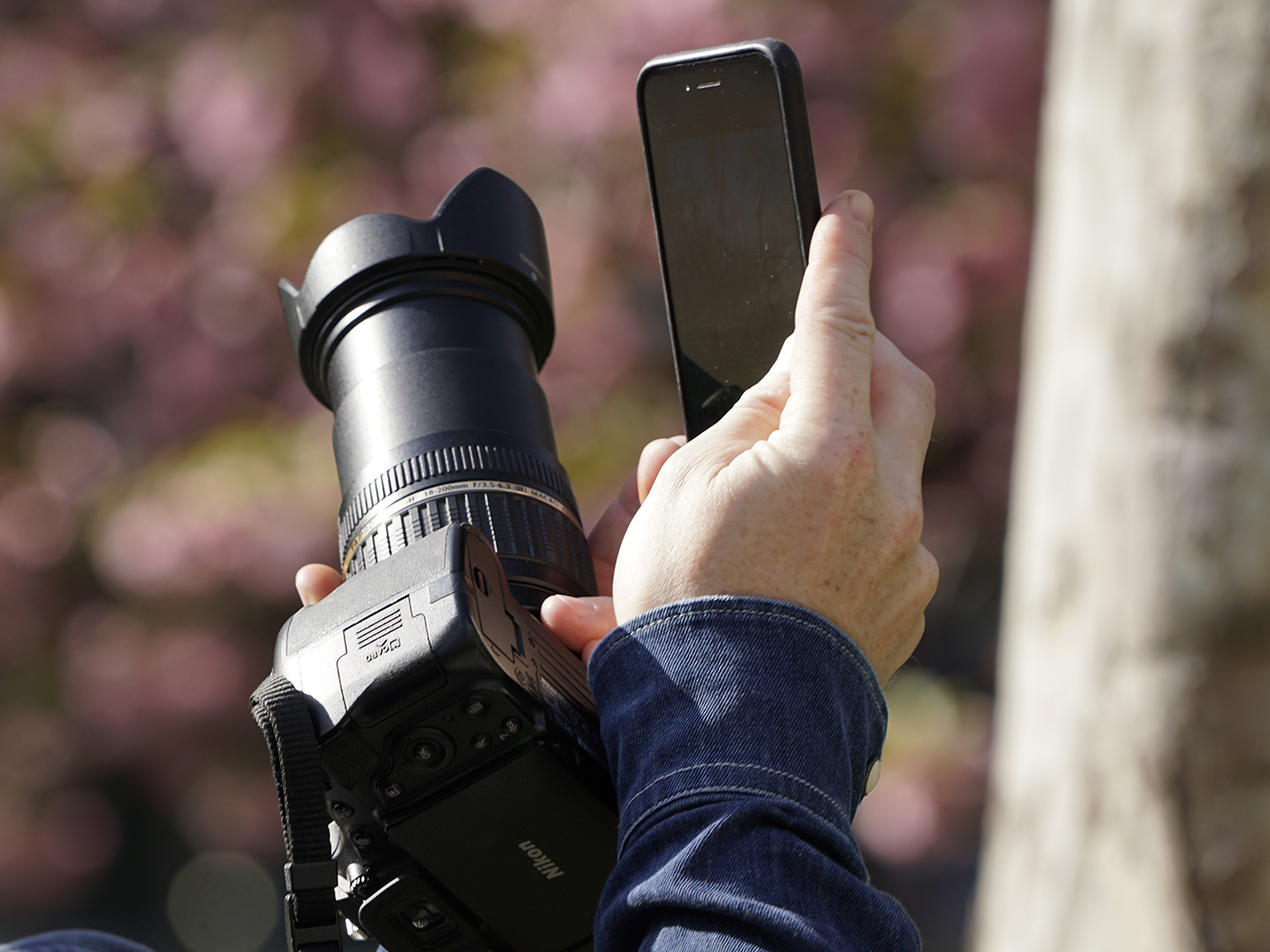 bg-dslr-or-phone.jpg