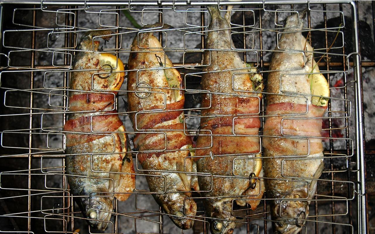 grilled-camp-fire-trout-recipe-chowhound