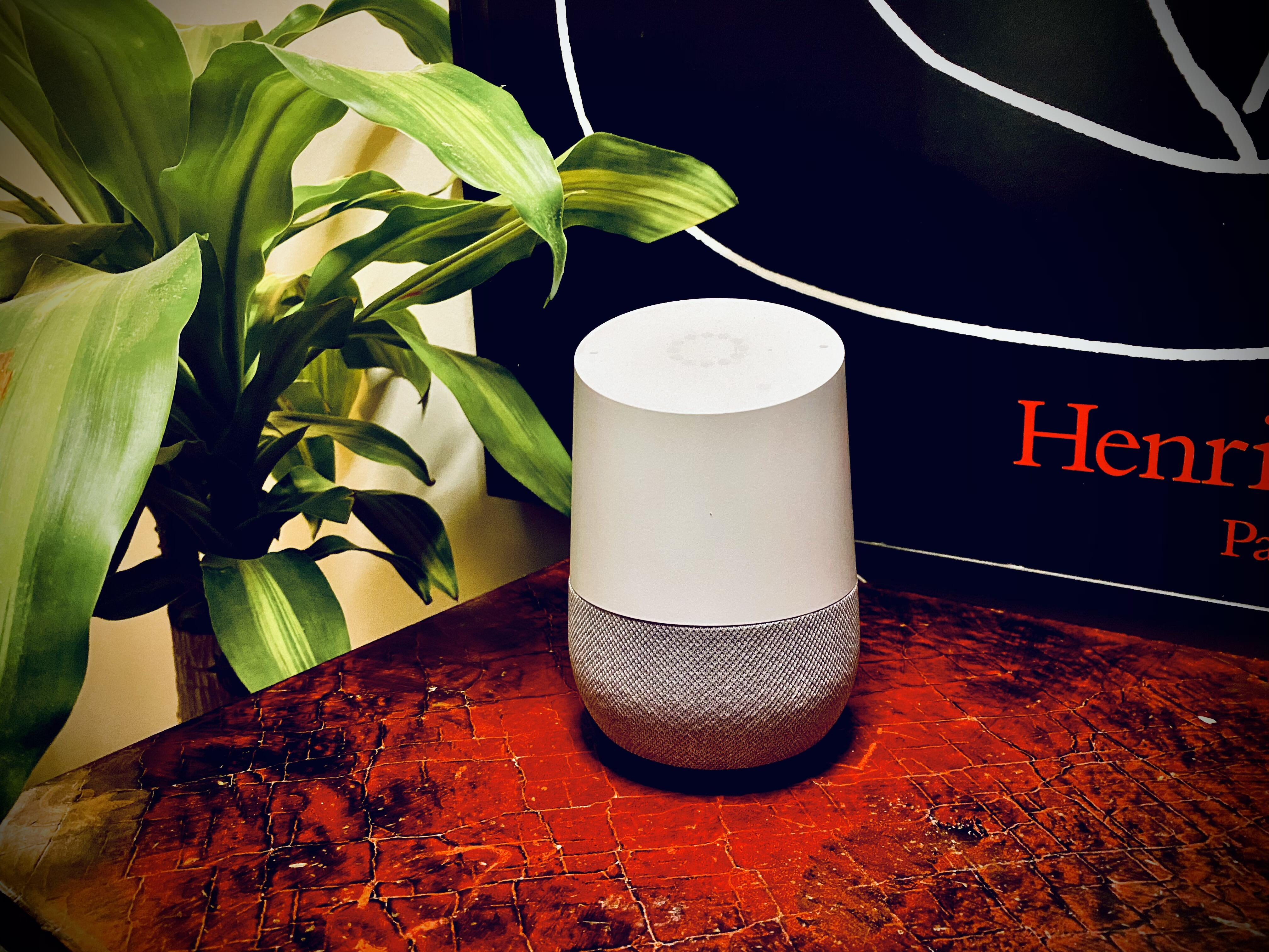 google home with painting and houseplant