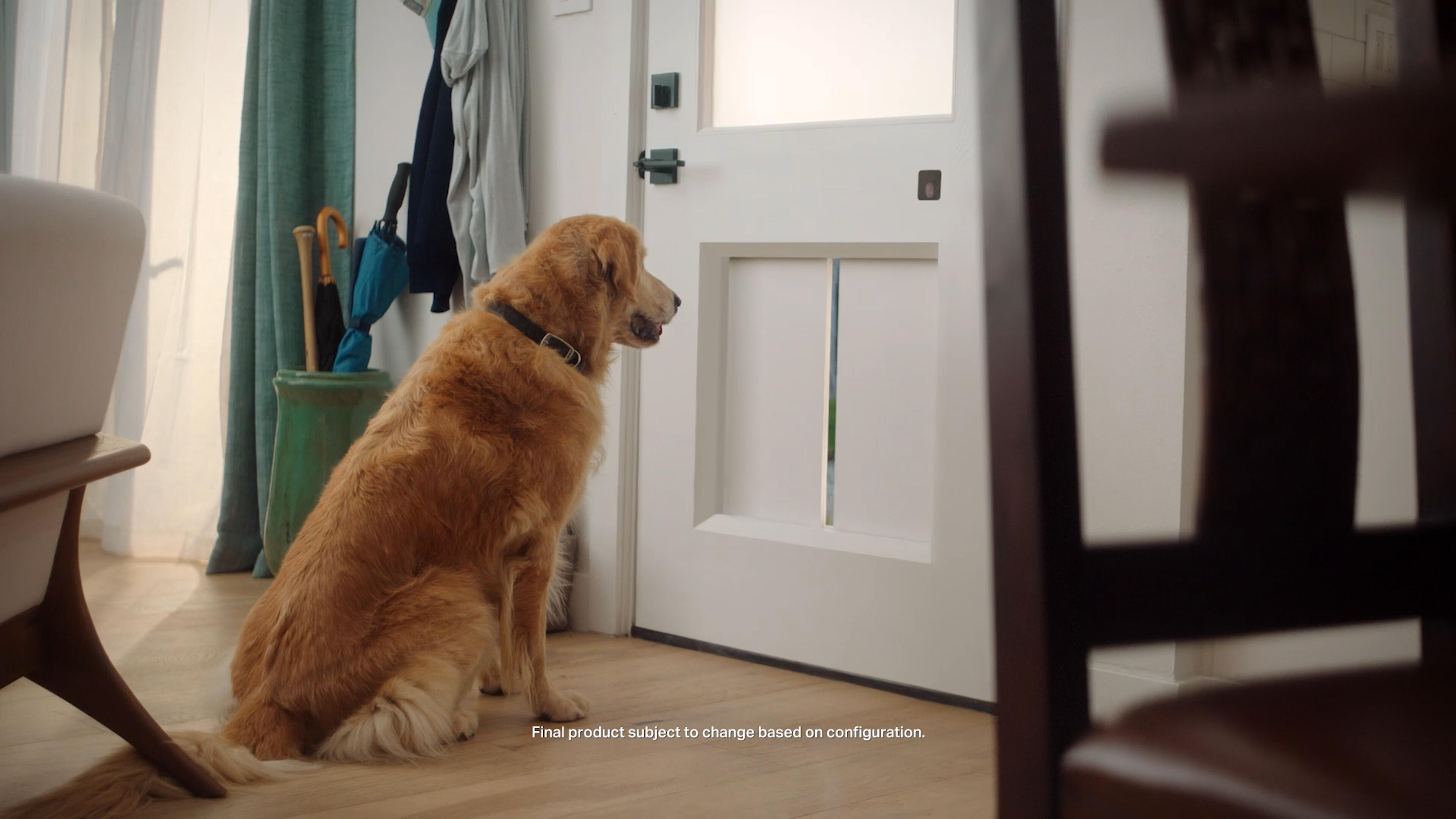 Video: MyQ's smart doggy door can open at your pup's command