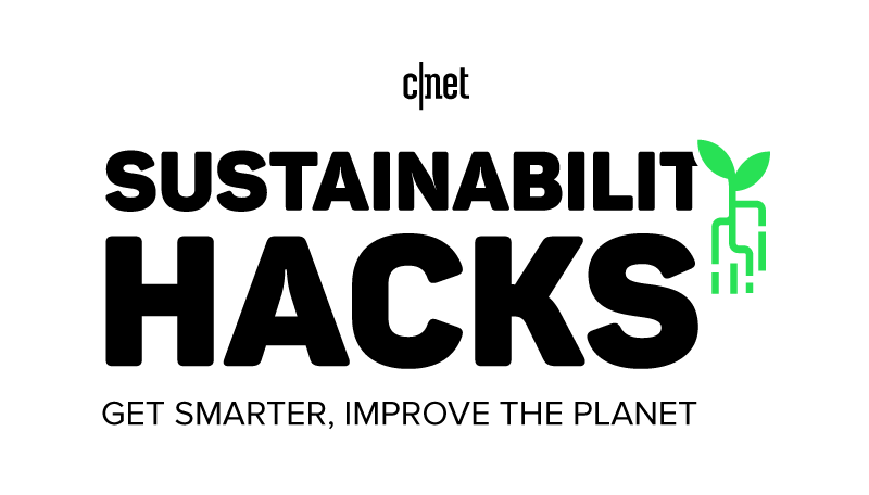 sustainability-hacks-bug.png
