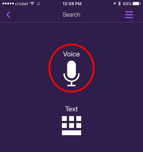 roku-app-voice-search.jpg