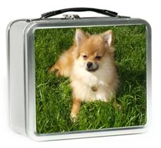 Photo lunchbox