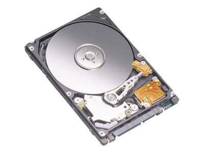 Dell hard drive - 80 GB - SATA-300