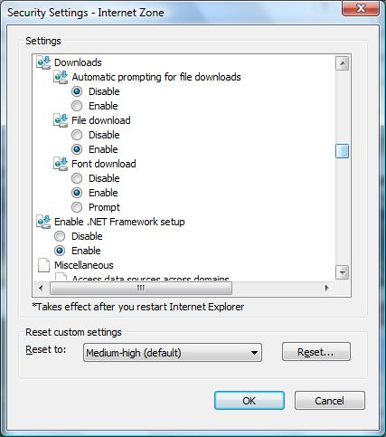 Internet Explore 8 Security Settings dialog