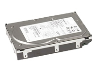 Dell hard drive - 300 GB - Ultra320 SCSI