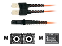 Black Box Economy patch cable - 3.3 ft