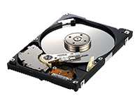 Samsung FlashOn Hard Drive (120GB)