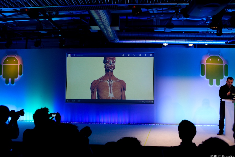 Google Body demo
