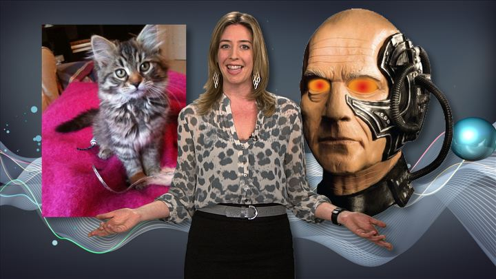 Video: WiFi cameras, super-soldiers, and remote-controlled kitties