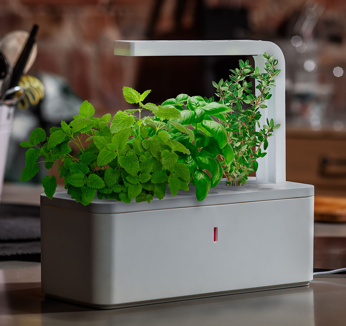Indoor Herb Garden Light The Gardening