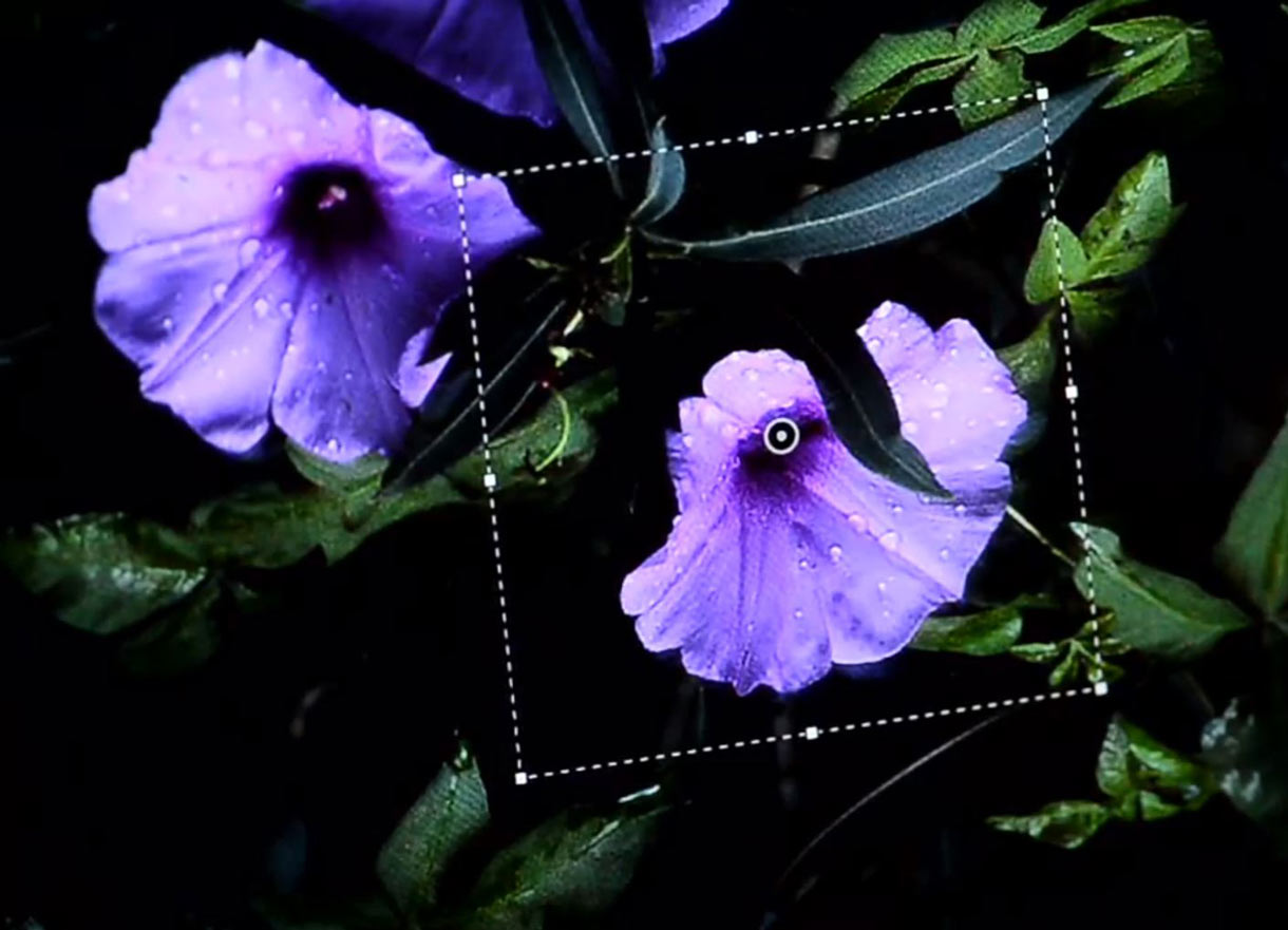 Photoshop will get a new filter designed to detect and correct blur from camera shake.
