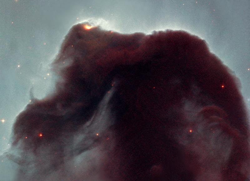 Close-up of the Horsehead