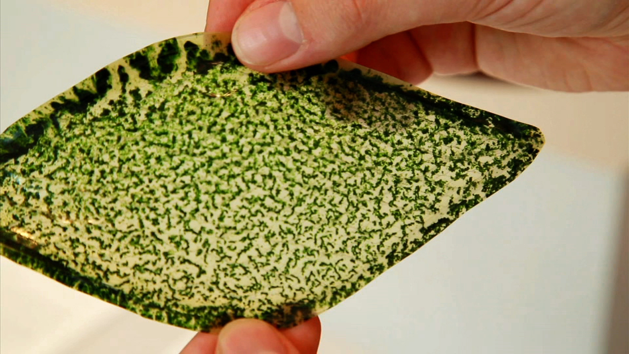 Video: Man-made photosynthesizing leaf could breathe air into buildings, spaceships, Ep. 168