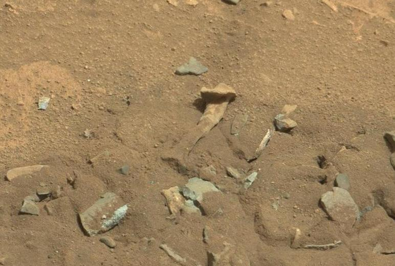 Bone-shaped rock on Mars
