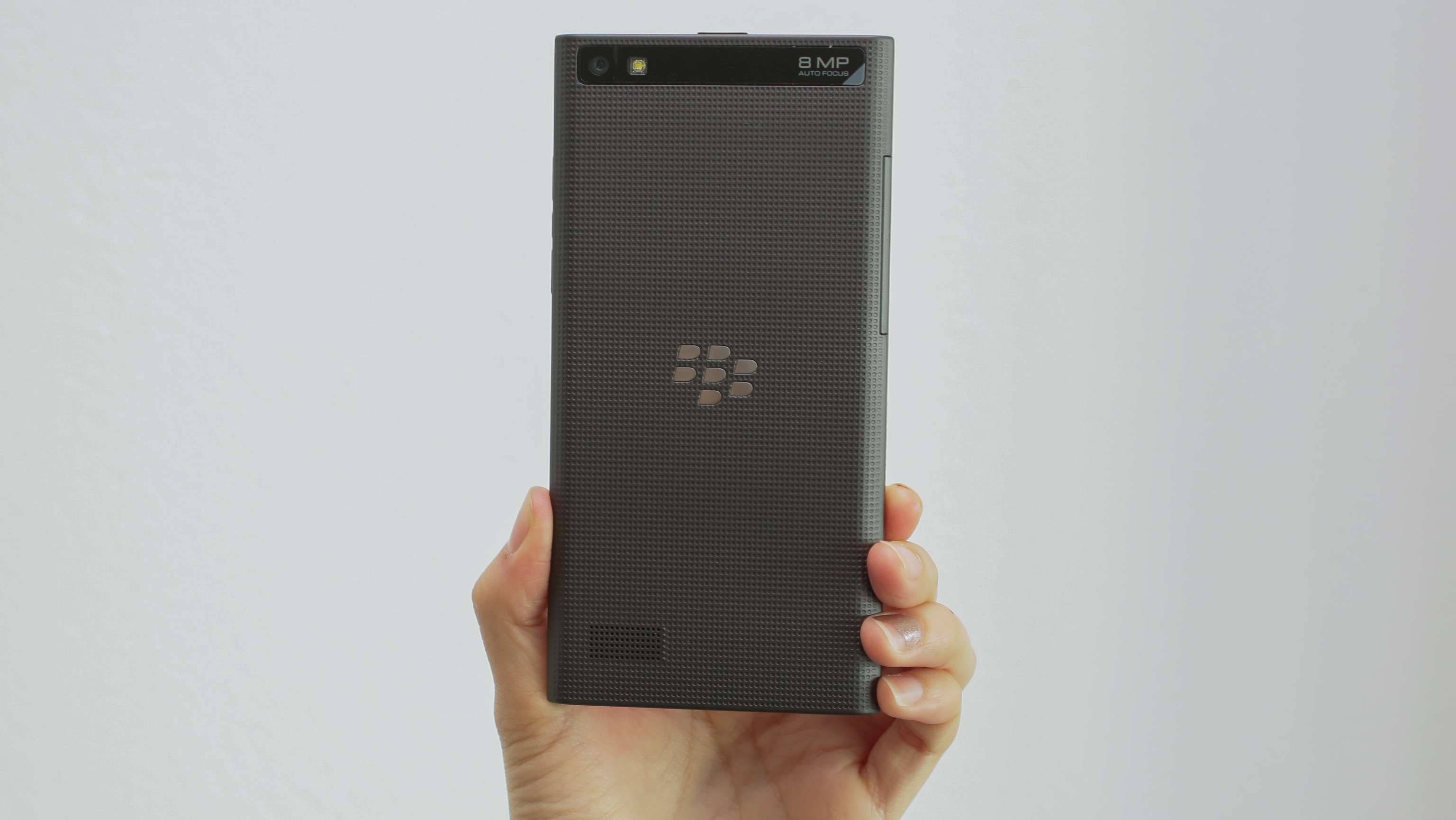 blackberry-leap-14.jpg