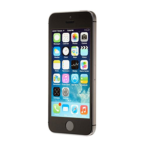 Apple iPhone 5S (16GB - Black)