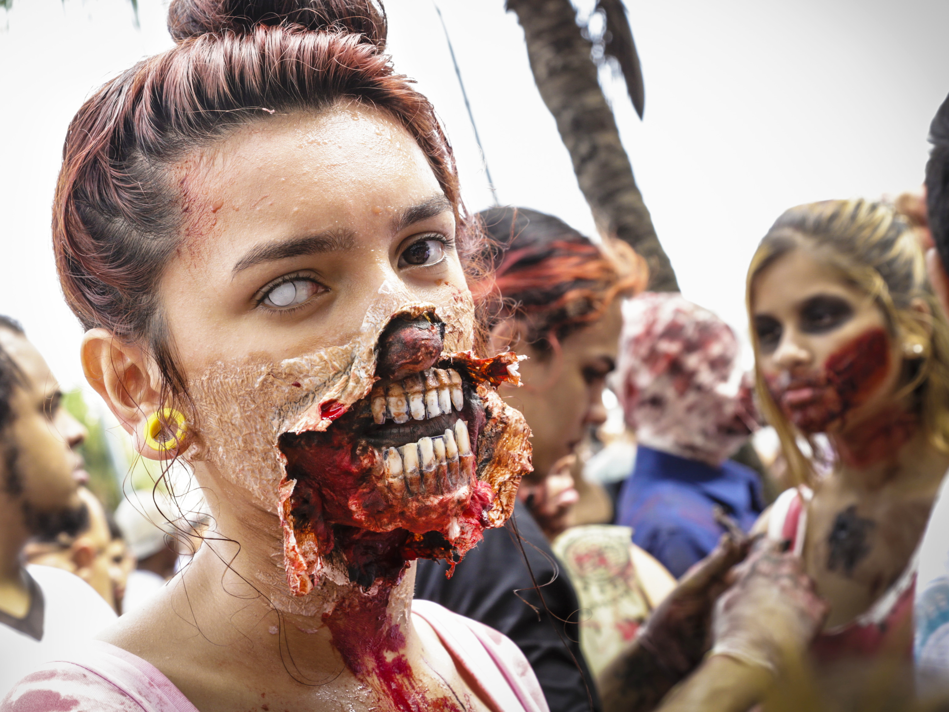 Amazon Puts Zombie Apocalypse Clause Into Terms And