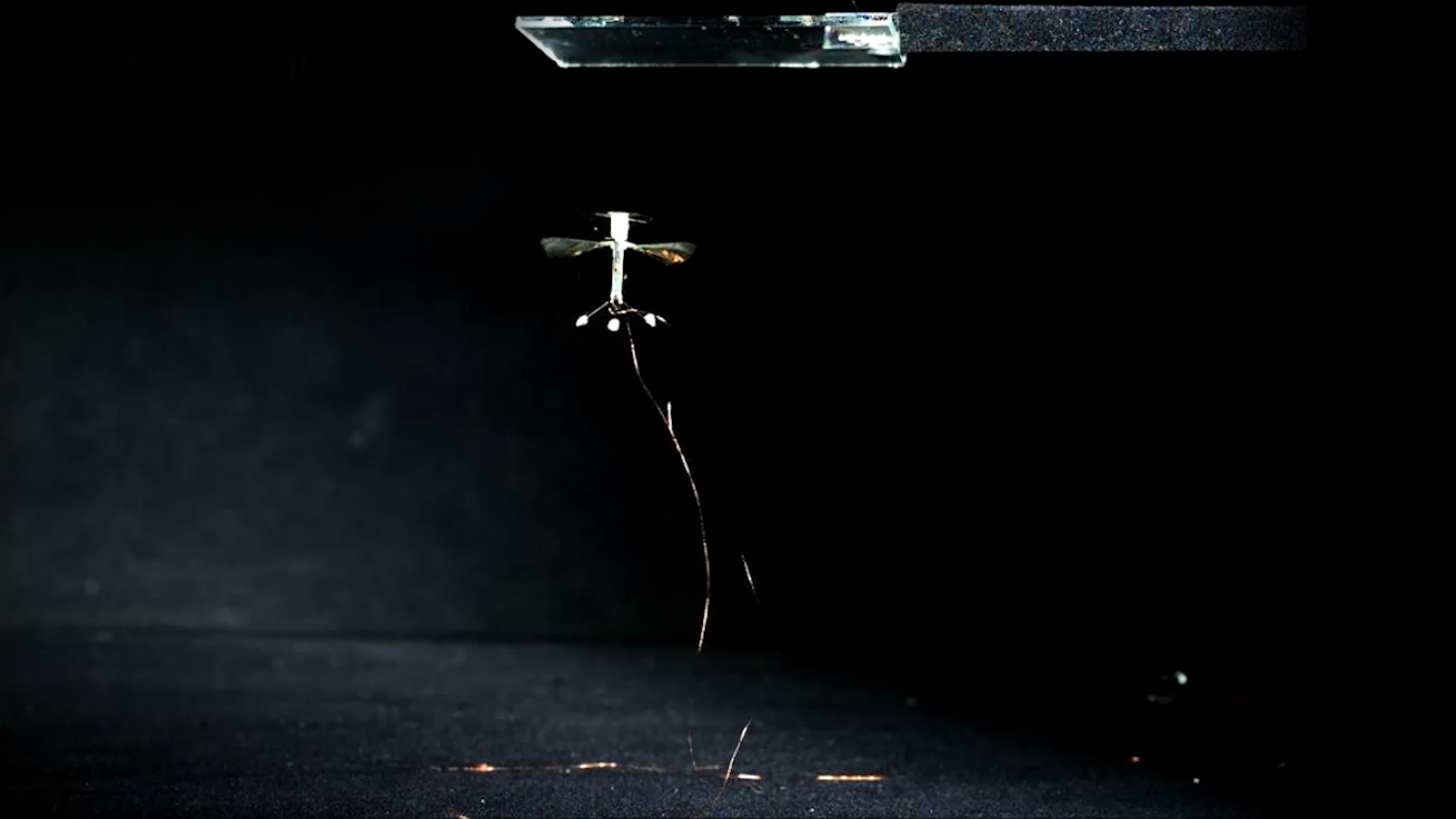 Video: Harvard and MIT get their insect-like robot to stick its landings