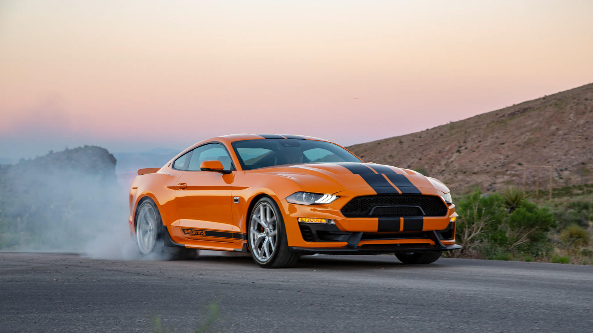 2019 Ford Shelby GT-S Mustang