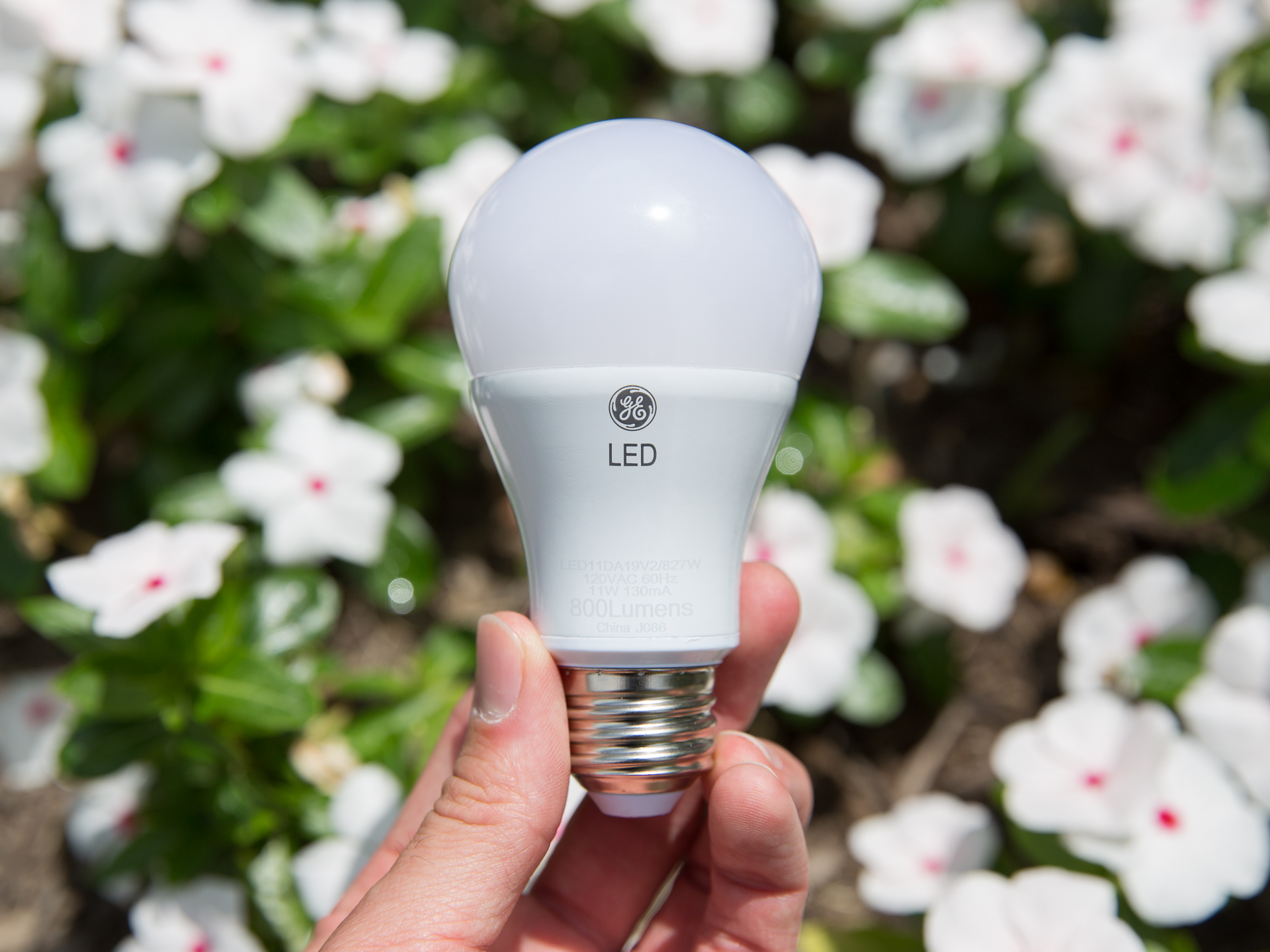 ge-60w-replacement-led-product-photos-2.jpg