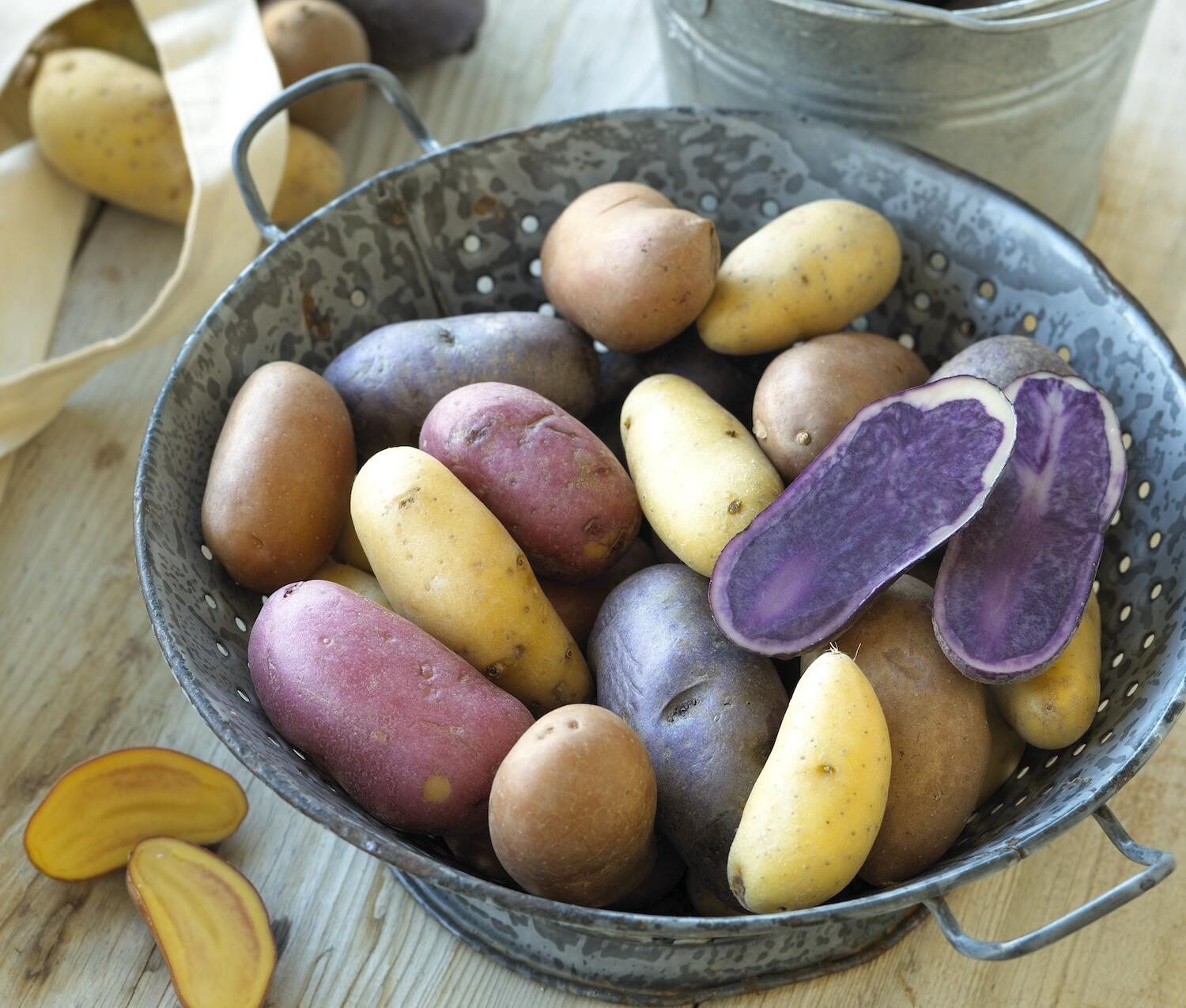 fingerlings-without-sign