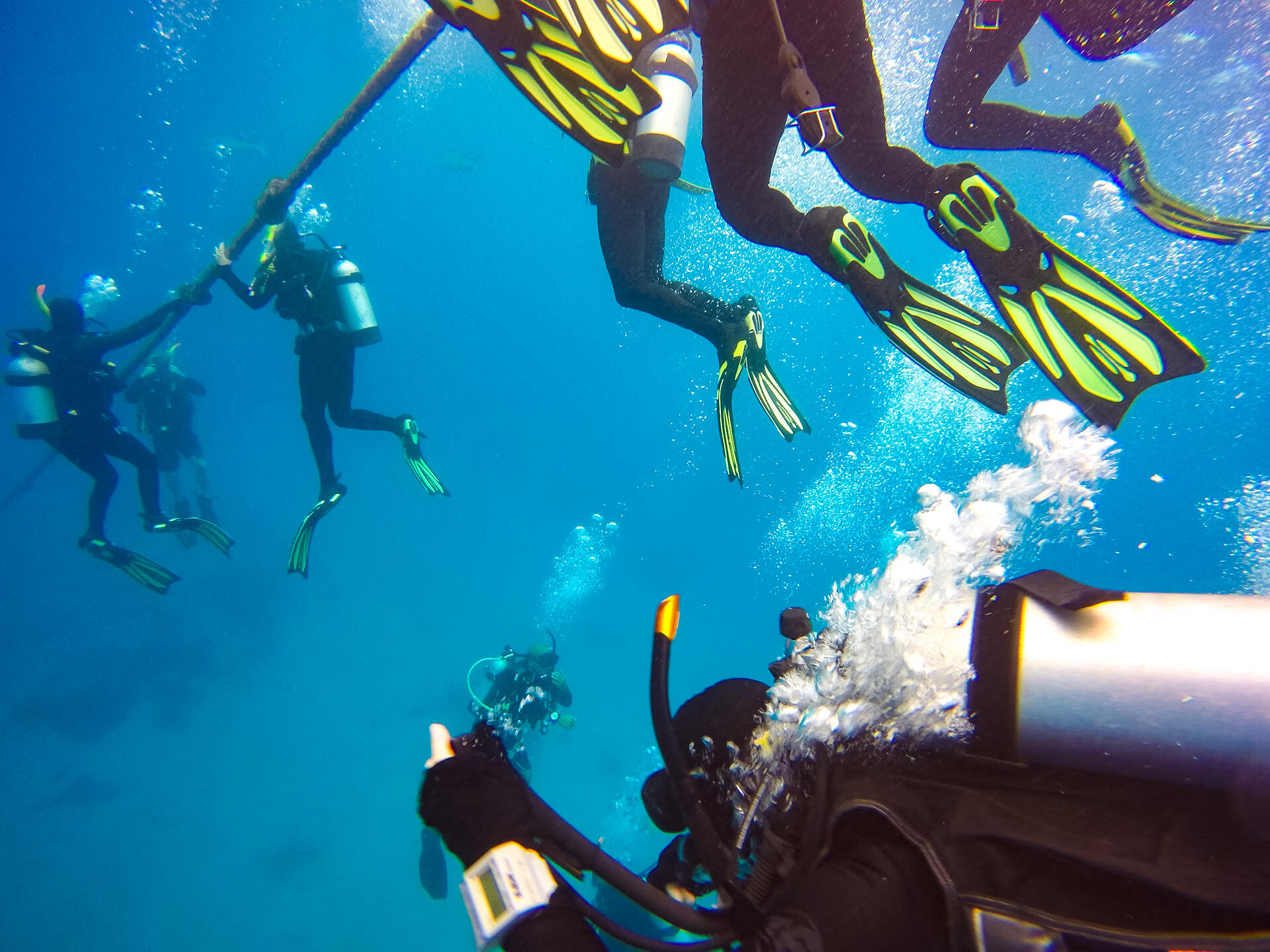 divers-on-the-great-barrier-reef