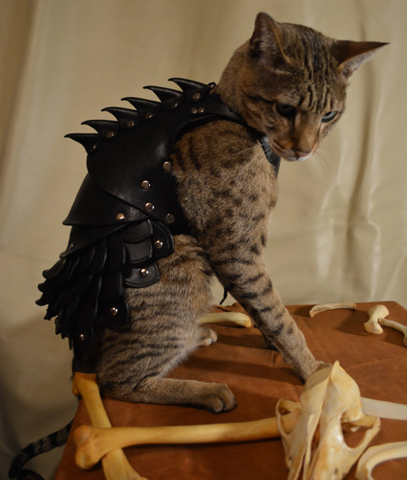 Cats already think they're Kings of your castle, and wearing this custom-made battle armor will make their claim to the throne legit.