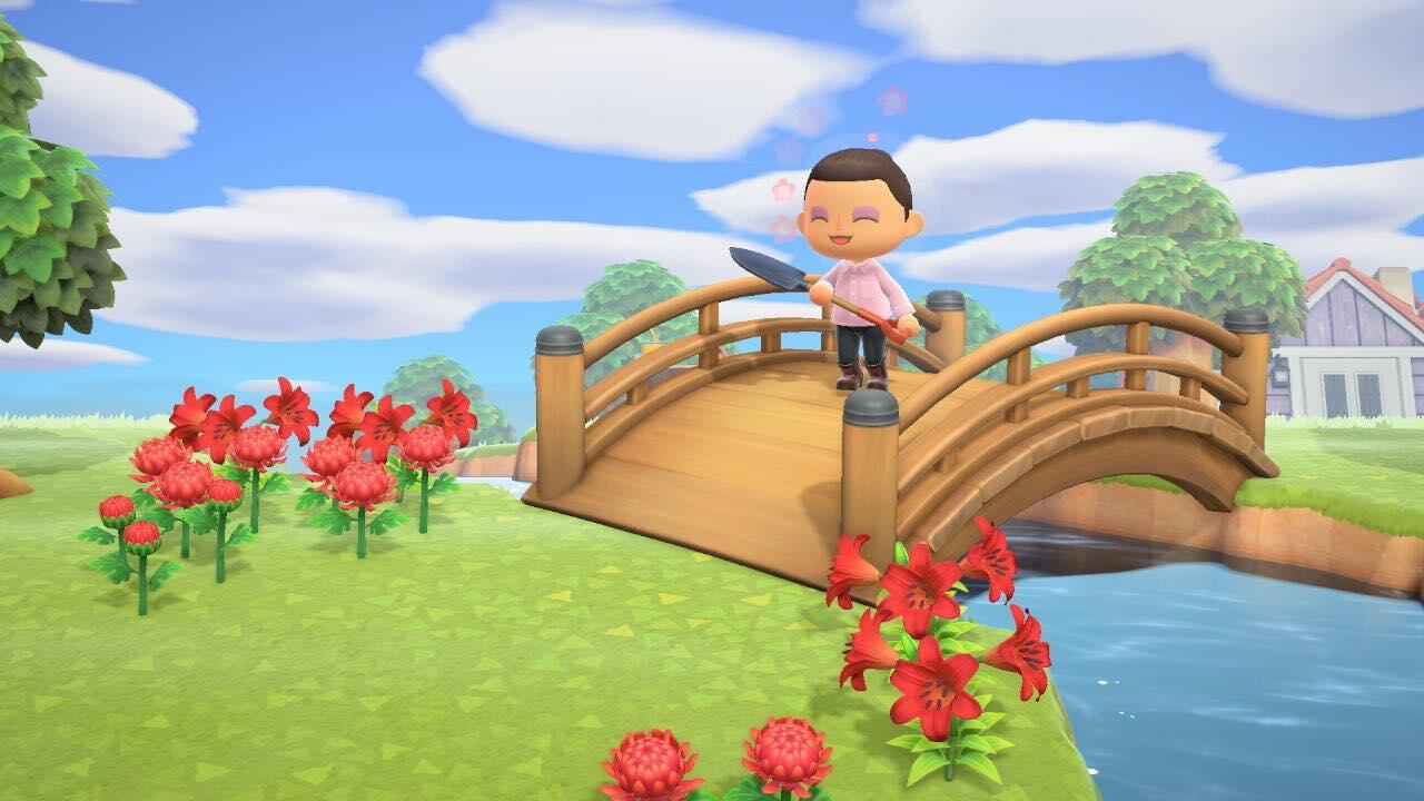 An ode to my dead, decaying Animal Crossing island     – CNET