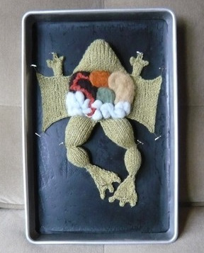 Knitted dissection kit