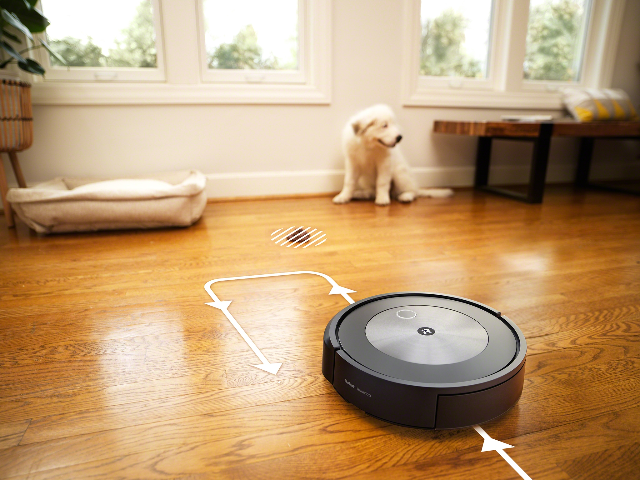 roomba-j7-j7-object-detection-pet-waste