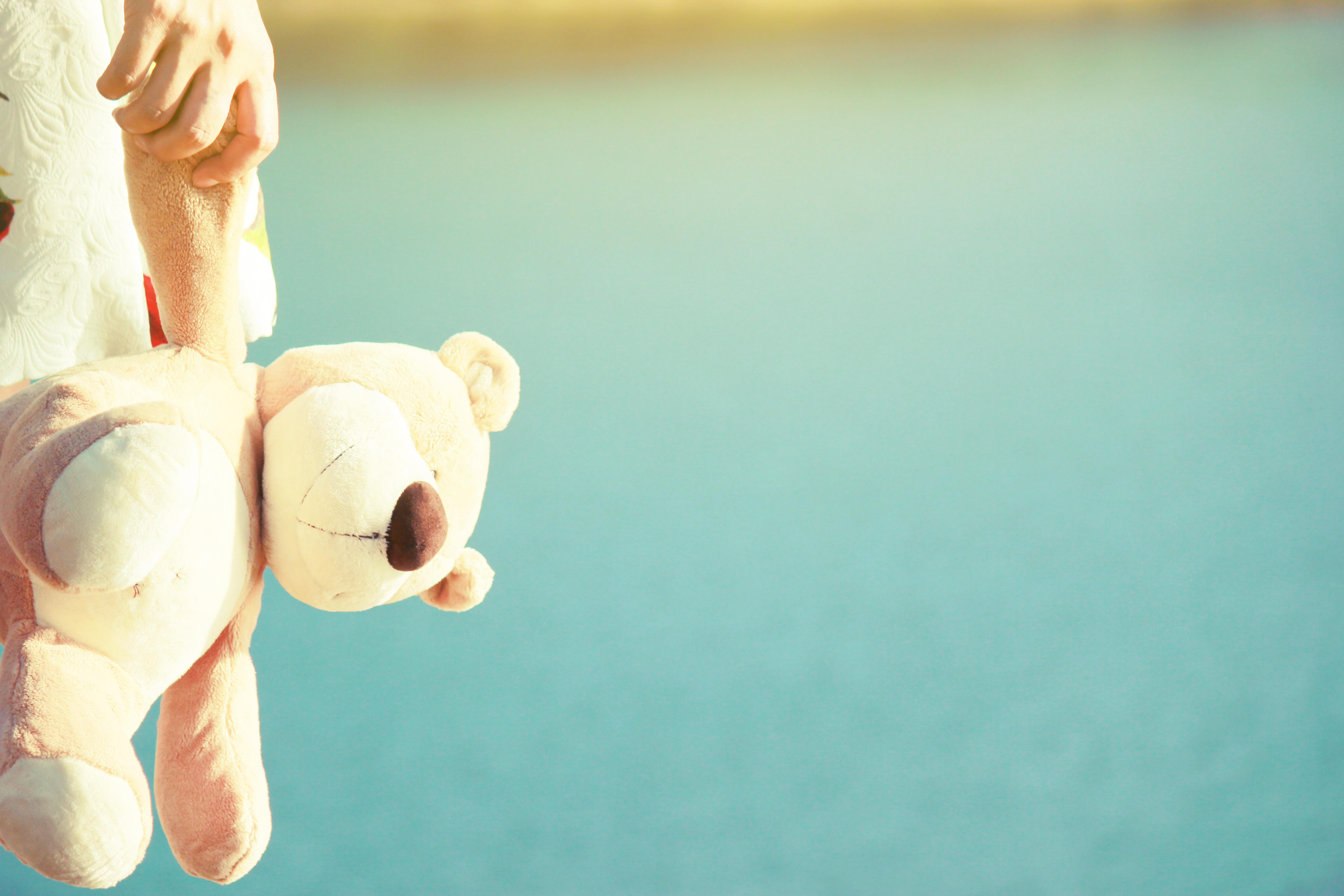 Cropped Hand Of Woman Holding Teddy Bear At Beach