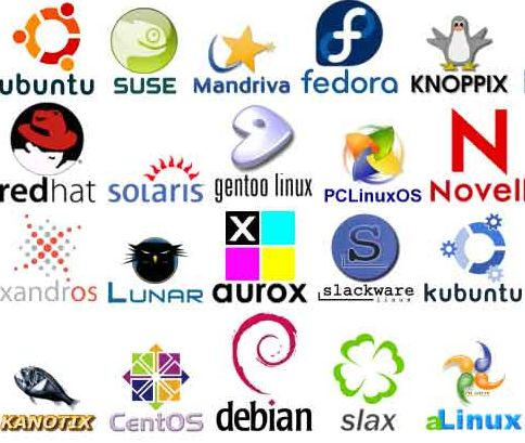 Linux comes in a lot of different flavors. Do some research to figure out which one you might like best.