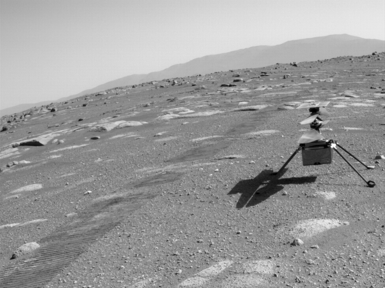 NASA's Mars Perseverance rover acquired this image of the area in back of it using its onboard Rear Right Hazard Avoidance Camera.