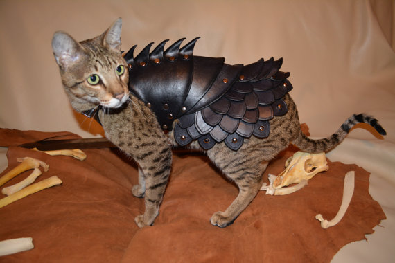 Mice and dogs alike will think twice before picking a fight with a cat wearing this battle armor for sale on Etsy.