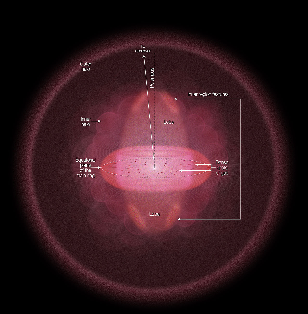 Geometry and structure of the Ring Nebula