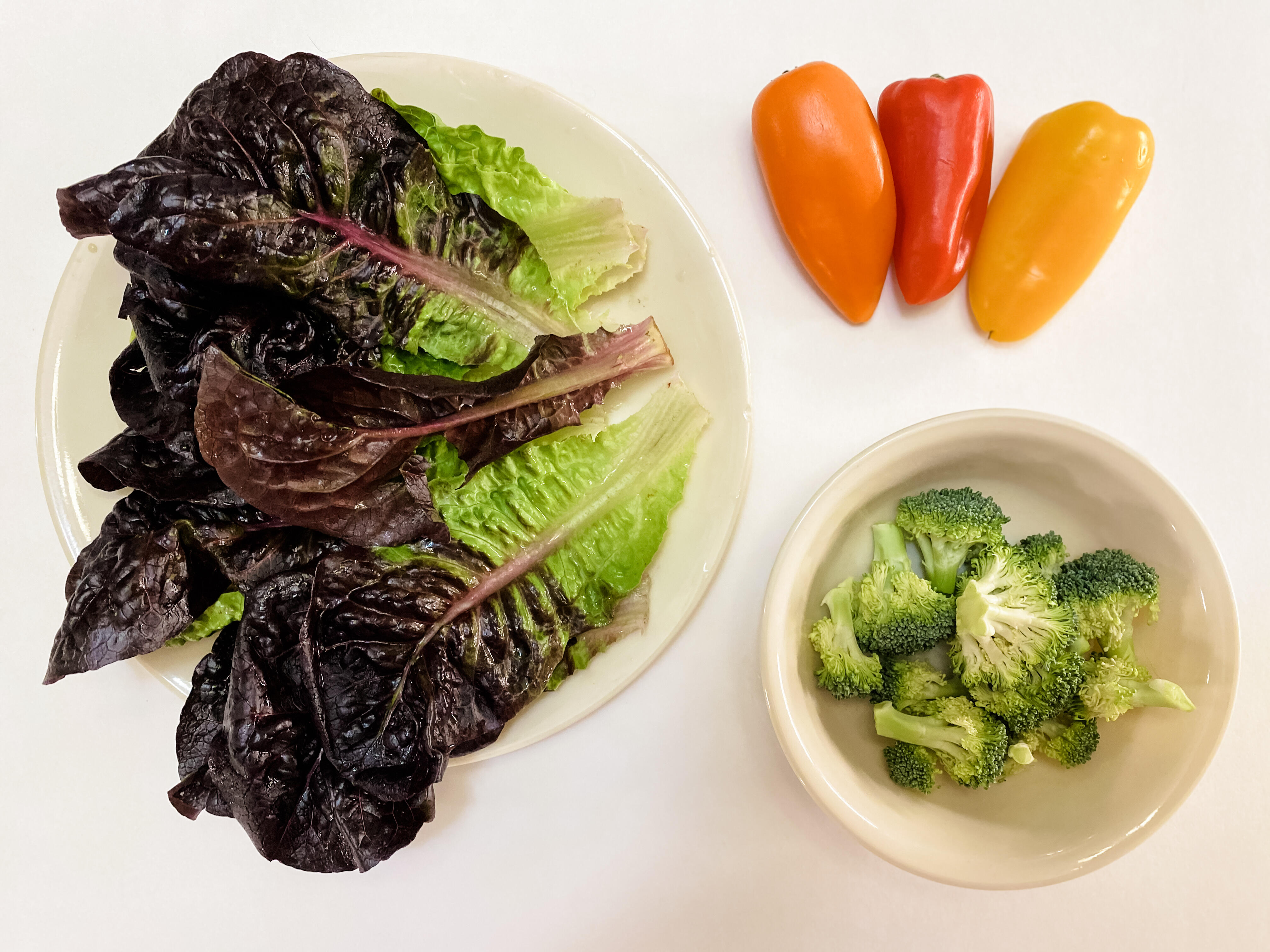 Five servings of vegetables: 3 cups of lettuce, half cup of broccoli, half cup of bell pepper