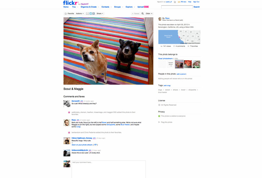 The old look of Flickr's main photo pages.