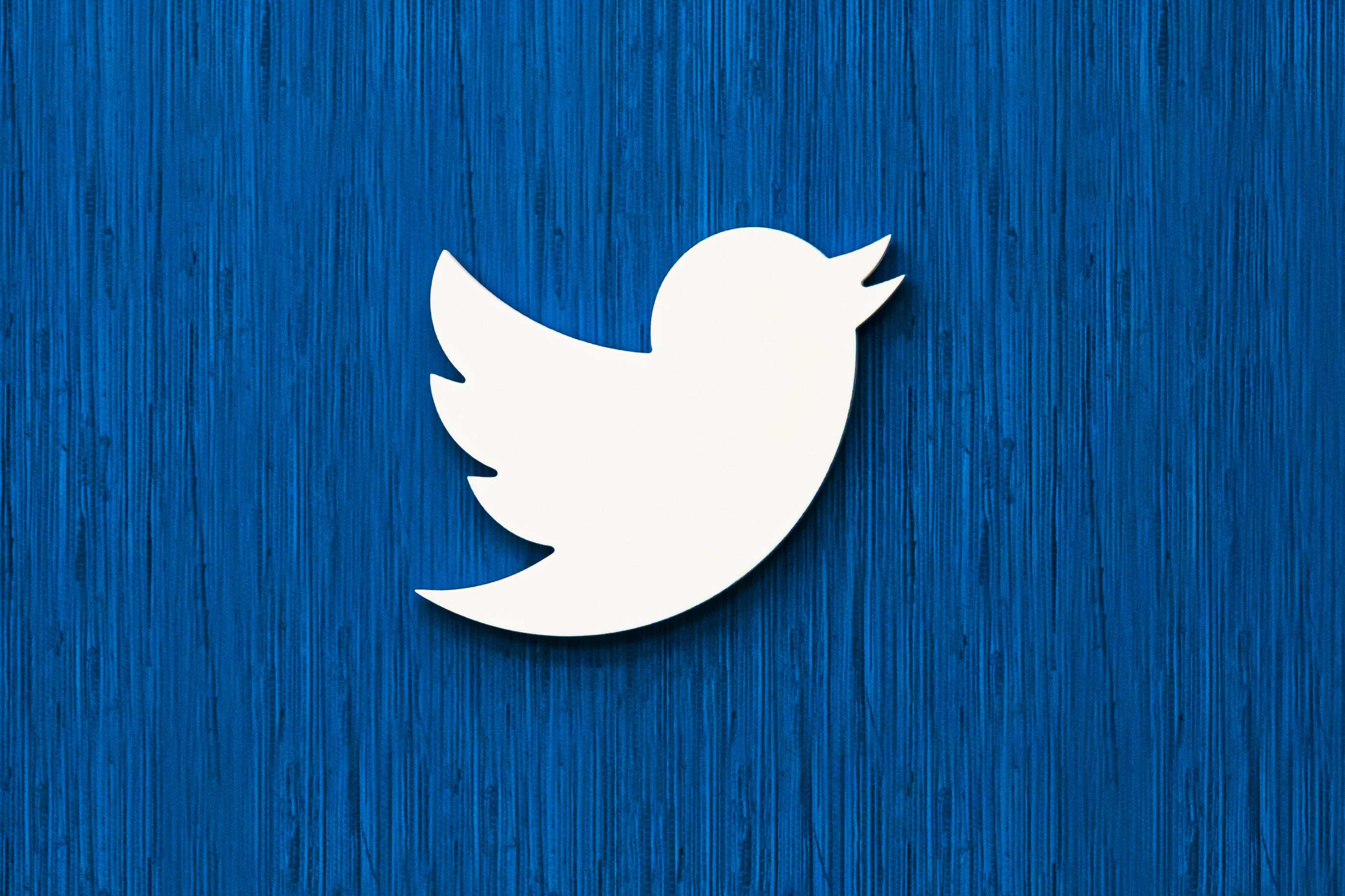 Twitter's white bird logo hanging on a blue wall.