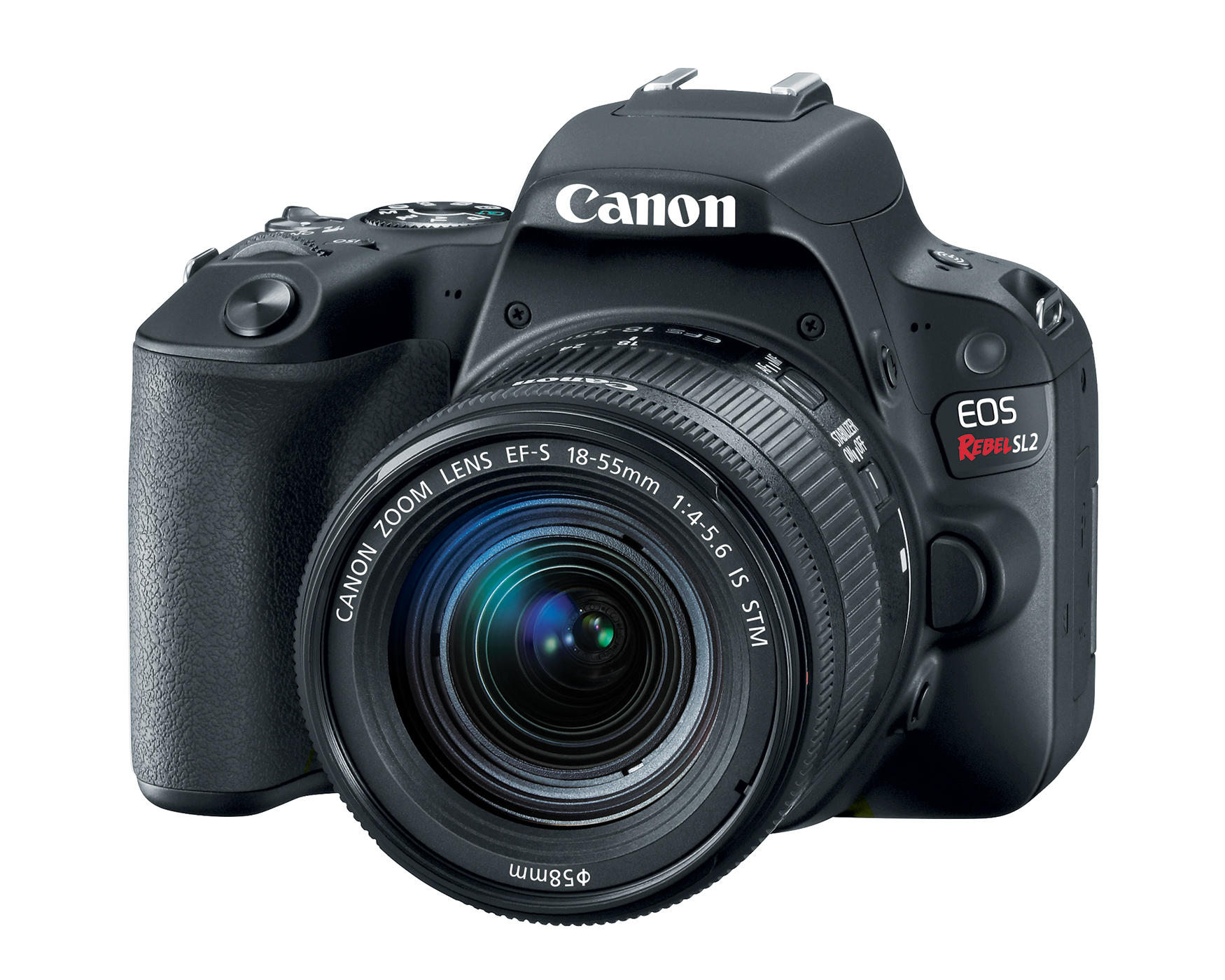 Canon EOS Rebel SL2 (with 18-55mm lens)