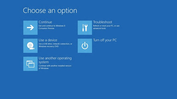 """Windows 8 screen with """"Use a device' option that allows boot on an alternative drive."""