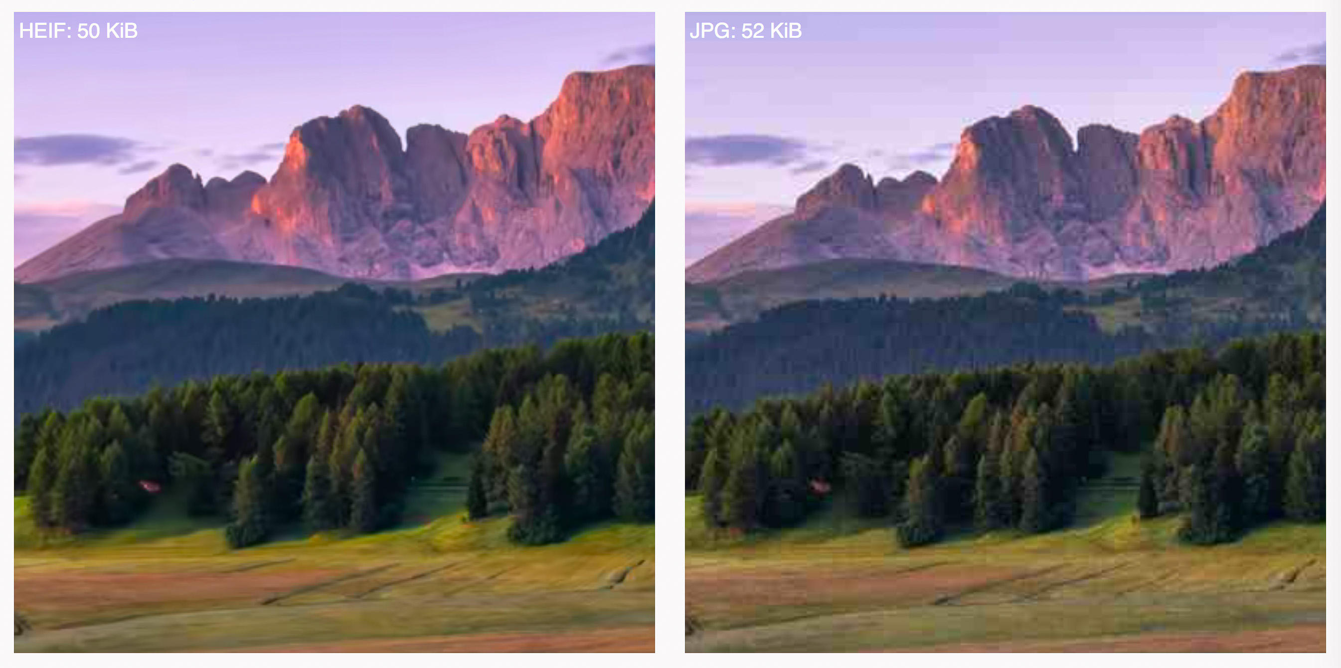 These cropped-in views of a larger image show how HEIF, left, offers richer colors and fewer speckly artifacts near high-contrast borders compared to a JPEG of about the same size.