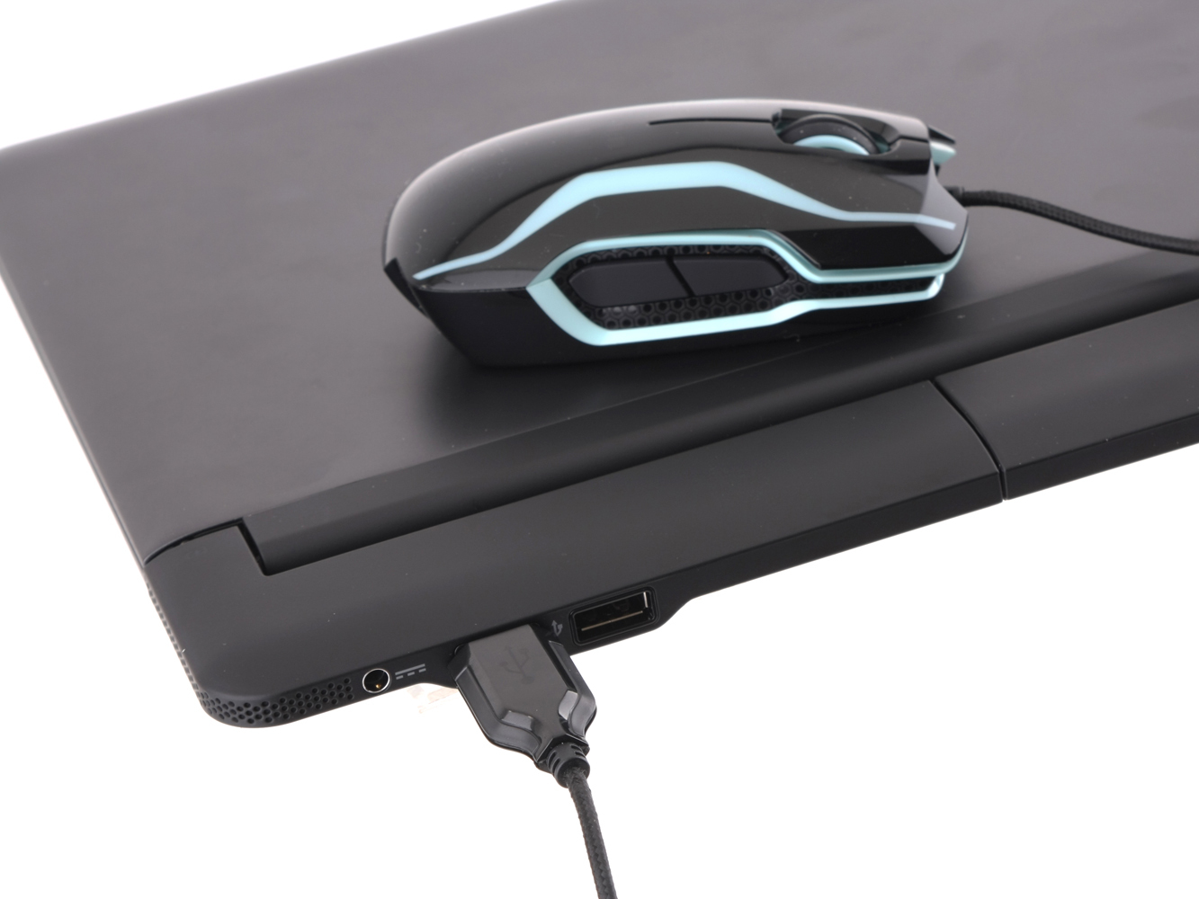 The rear USB ports work with mice, or with flash drives.