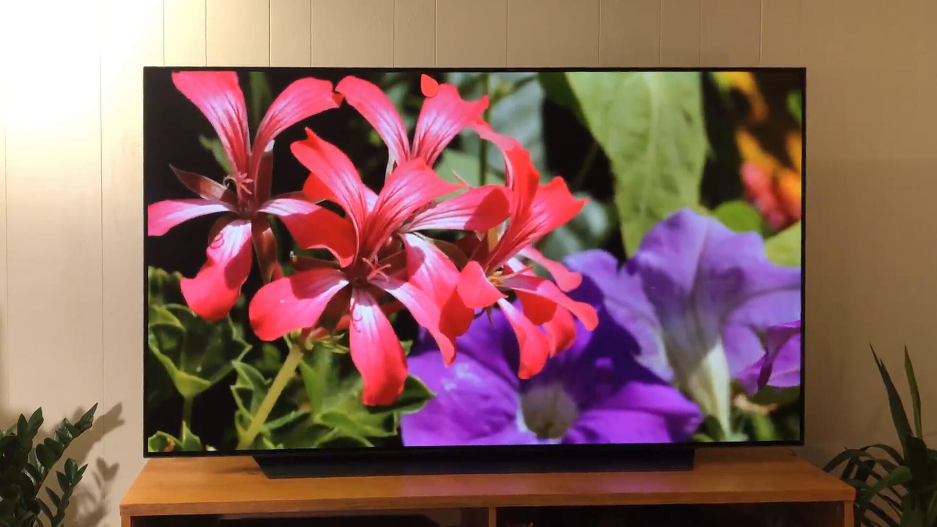Video: LG CX OLED TV review: Awesome picture, high price