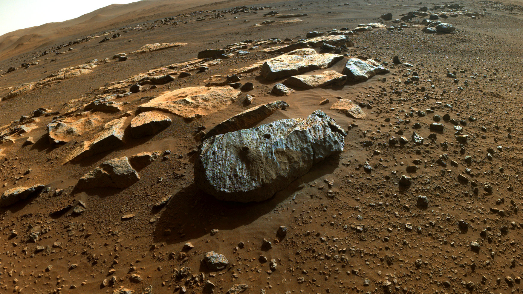 Mars rover rocks reveal 'potentially habitable sustained environment'