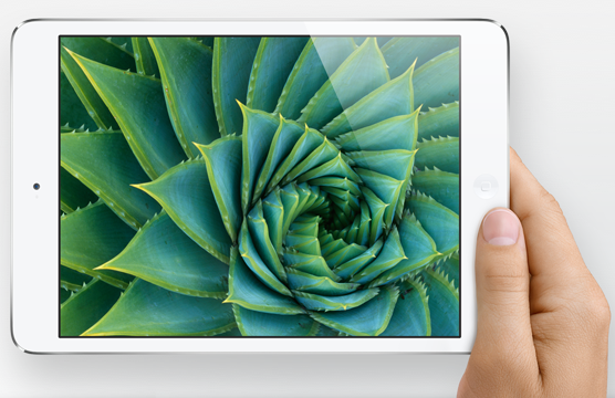 The PC world doesn't have anything like the iPad Mini.  That's a problem.  Just ask Intel.