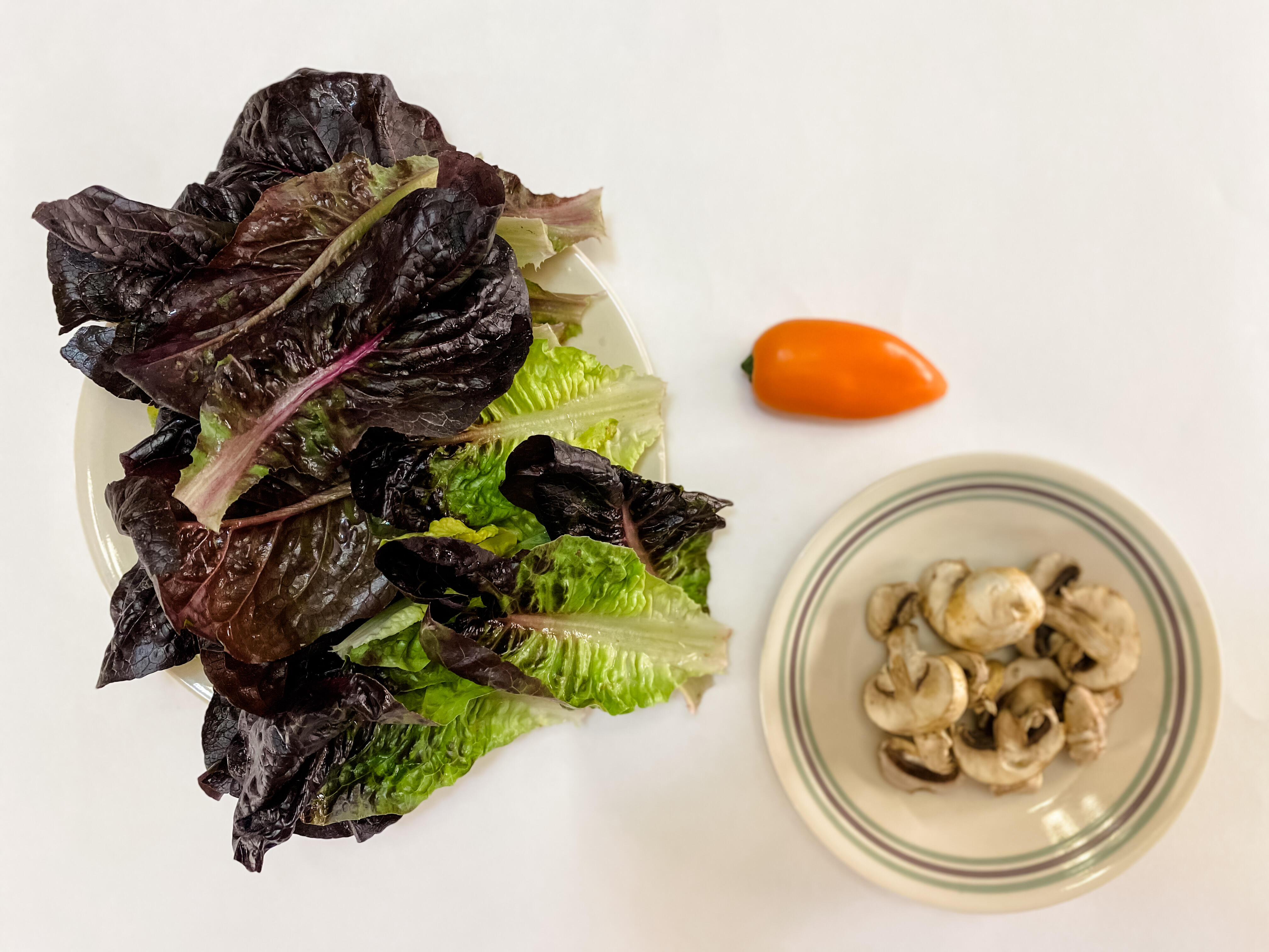 5 servings of vegetables: 4 cups of lettuce, half a cup of mushrooms and a bell pepper for a good dose.