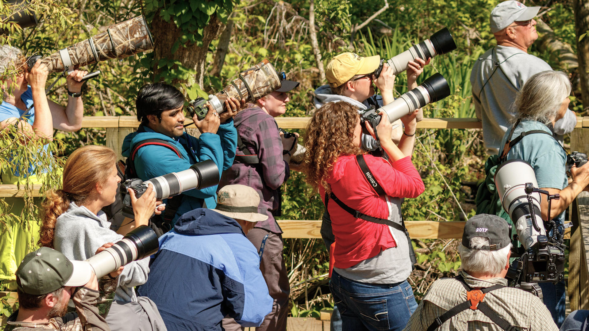 Video: Birding takes flight