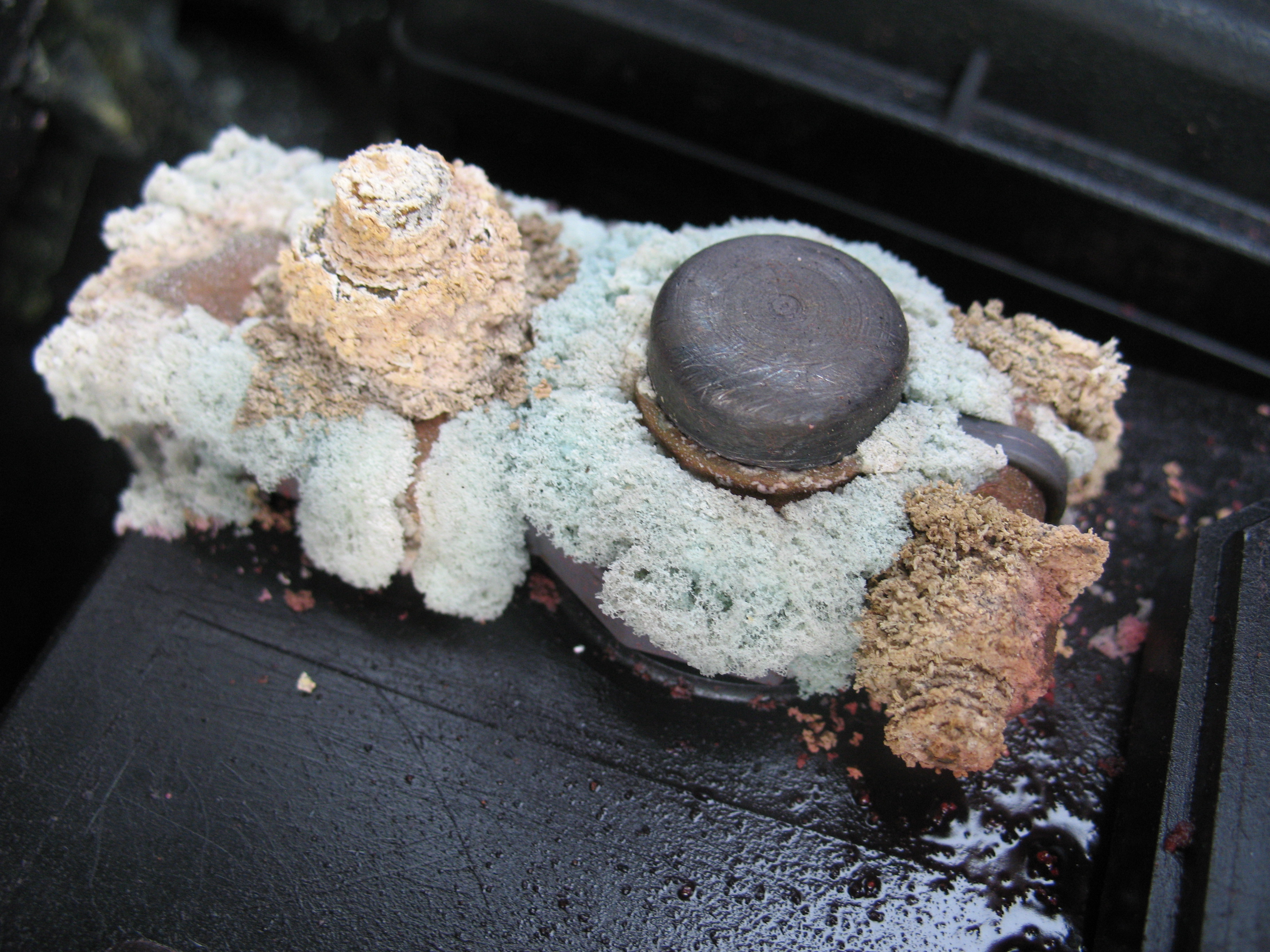 Remove corrosion from car battery terminals